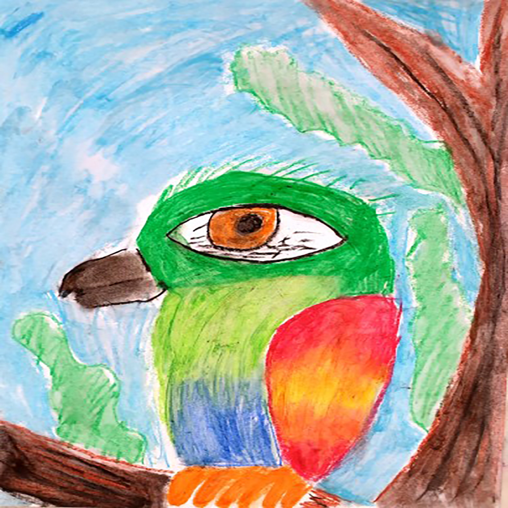 #summerart #summercamp #summerfun #art4kids #artactivities #tucan #tucanwatercolor #tucanoilpastels (2)